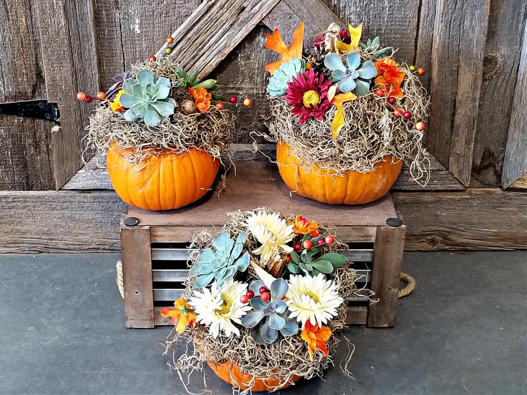 Make & Take A Succulent Pumpkin
