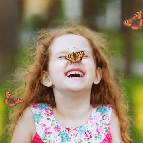 Casey's Butterfly Festival
