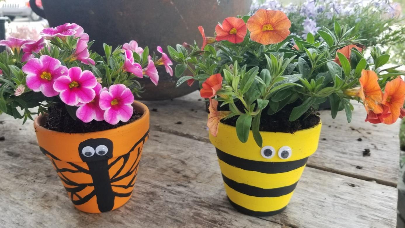 Paint A Pollinator Pot